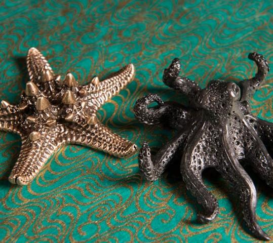 Swallow's Octopus & Starfish