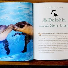 A spread from UNlikely Loves showing a dolphin and a seal kissing