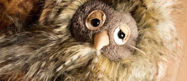 Jellycat's Orlando Owl
