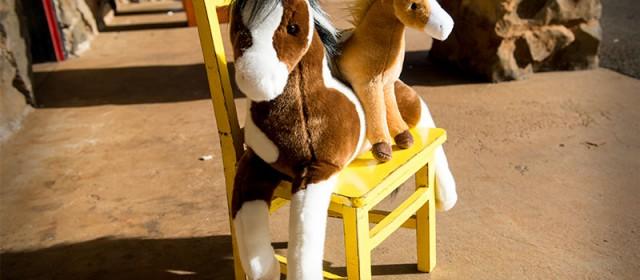 Douglas Horses